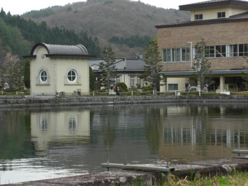 桜 上米内浄水場20080427