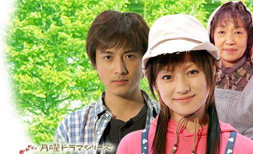 GREEN〜農家のヨメになりたい〜の主演深田恭子