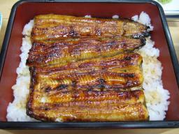 20080105_kawaei6