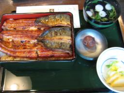20080106_kandakikukawa5