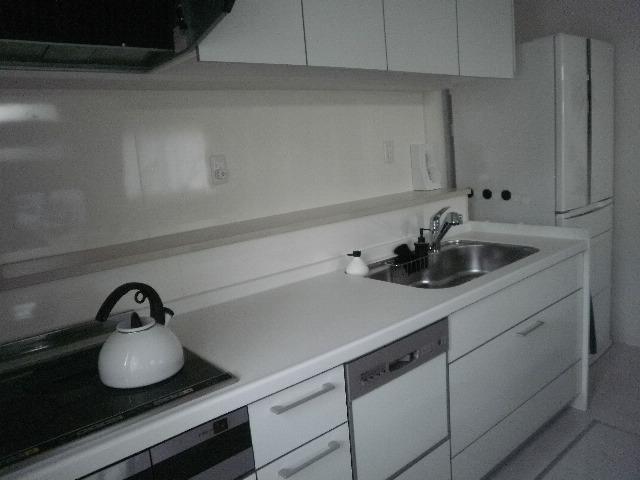 キッチン システムキッチン 引き出し 収納 : システムキッチン引き出し ...
