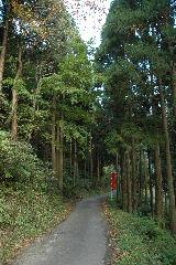 阿瀬渓谷への道