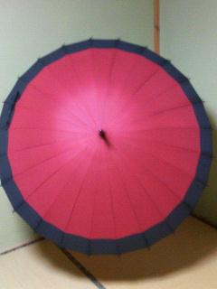 24本骨雨傘