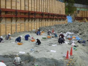 ミエゾウの足跡発掘現場