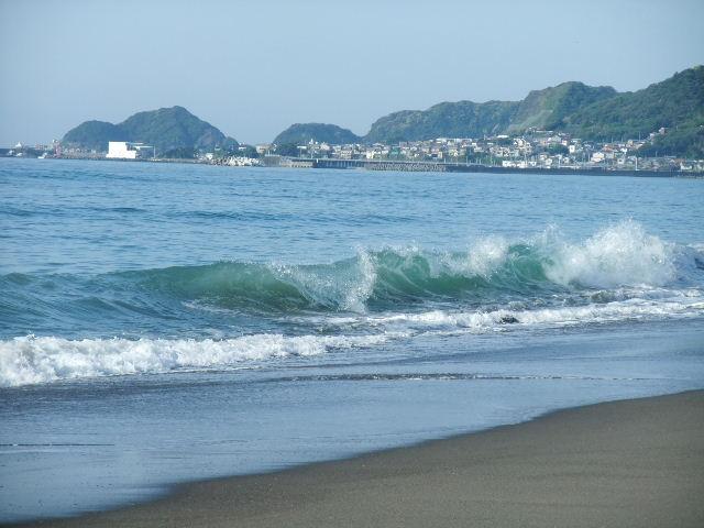 千葉/鴨川.JPG