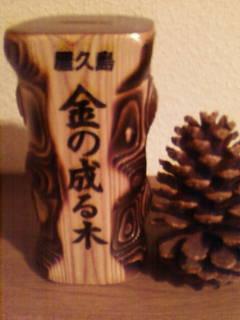 金の成る木の貯金箱.JPG