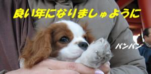 お参り.jpg