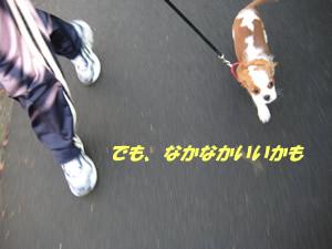 颯爽と走る.jpg