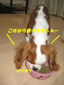 食べる.jpg
