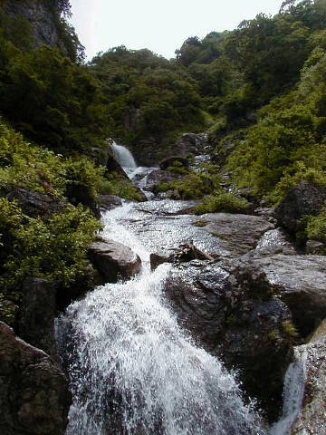 conv0147.jpg