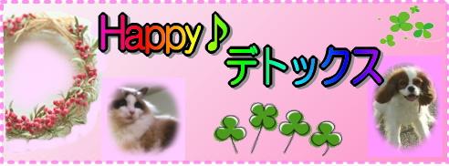 【超実践しあわせ健康法】病気知らずの犬猫(わんにゃん)&美人さんを作るHappy♪デトックス