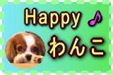 『愛犬とあなたの幸せ力を引き出す8つの法則』ストレスバイバイ♪Happyわんこ健康法