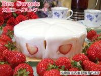 大阪ヨーグルトケーキ、ホール写真