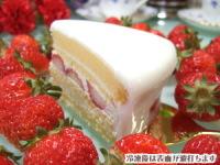 大阪ヨーグルトケーキ、カット写真
