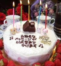 お取り寄せスイーツ、大阪ヨーグルト・ケーキ、デコレーション