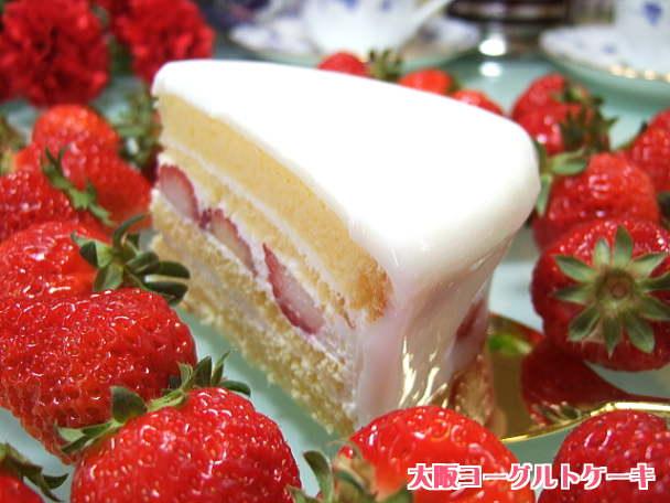 大阪ヨーグルトケーキ、ホールケーキをカット2