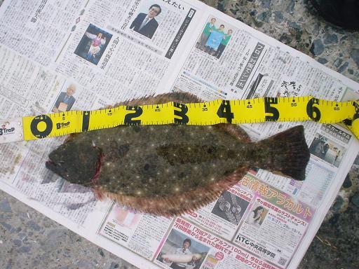 2008年10月26日_DSC00713.JPG