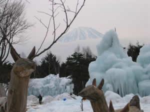 野鳥の森公園樹氷まつり(富士五湖 西湖)