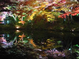 高台寺水面に映った紅葉