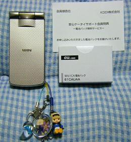 W61CA.JPG