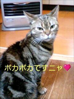 070115_1950~0001-0001.jpg