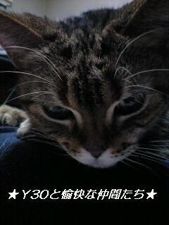 karen04_pa.JPG