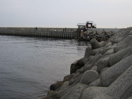 島 貝塚 人工