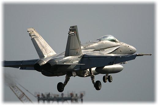 """VFA-94""""Mighty Shrikes"""""""