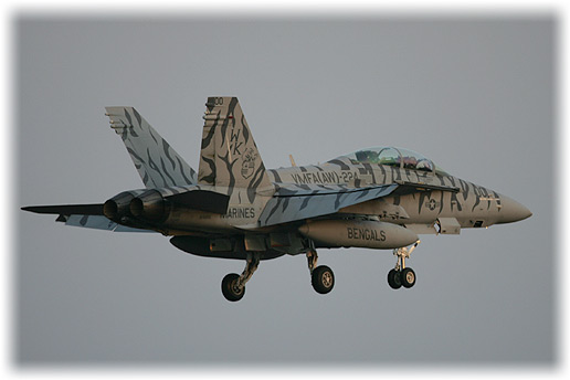 "VMFA(AW)-224""Fighting Bengals"""