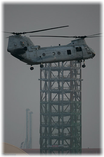 "HMM-262 ""Flying Tigers""(Rein)"