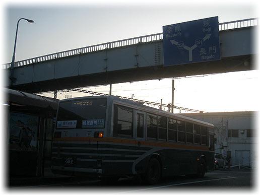 IMG_9355.jpg