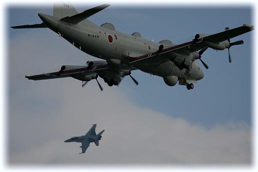 """VMFA(AW)-533""""Hawks"""" × 81FS"""