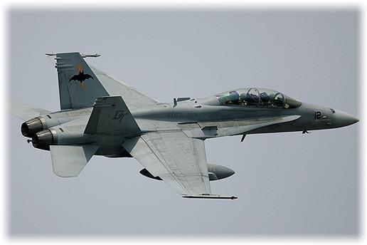 "VMFA(AW)-242""Bats"""