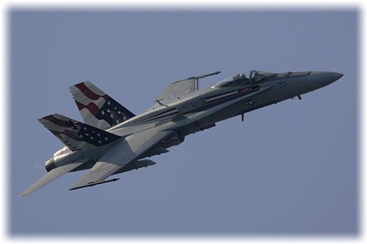 """VMFA-115""""Silver Eagles"""""""