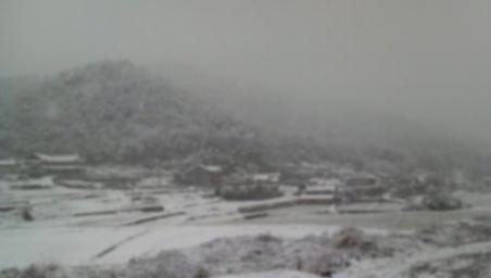 雪ぼかし.jpg