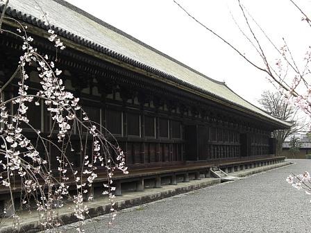 蓮華王院2.jpg