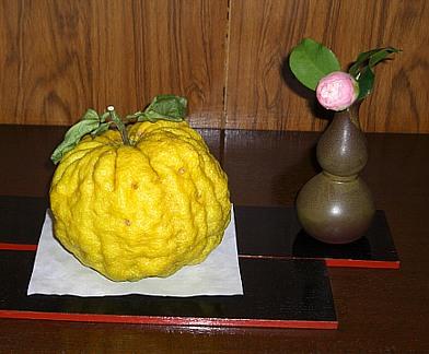 巨大柚子.jpg