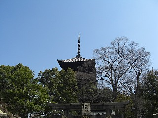 南門境内から五重塔を望む.jpg