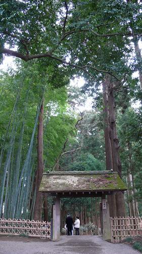 一の木戸と孟宗竹林