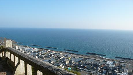 いちごラインと駿河湾