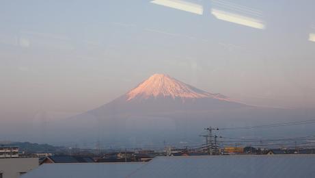 やっと拝めた富士山