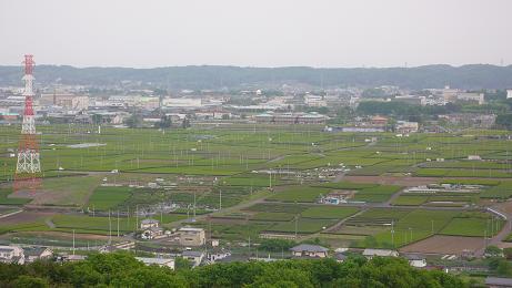 桜山展望台からの眺め