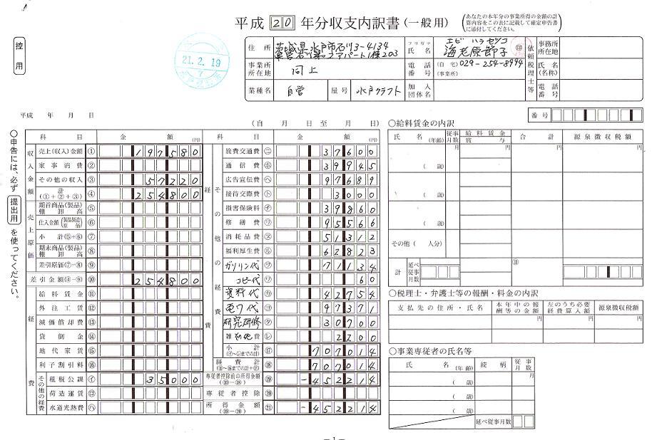 2008年度収支内訳(患者の会).jpg