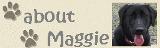 マギーのプロフィール