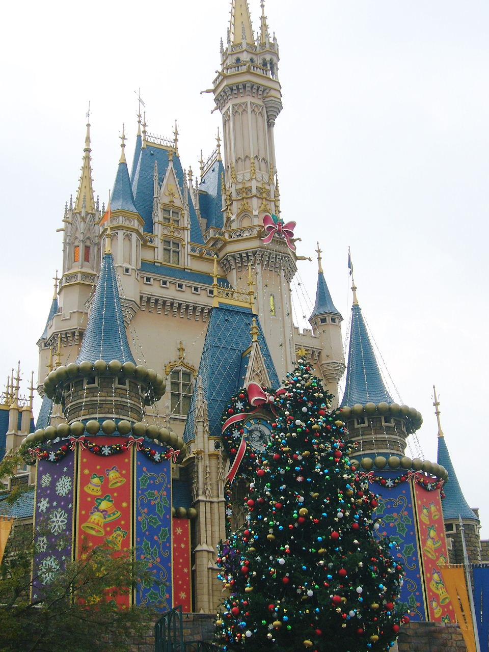 ディズニーランドのクリスマス画像アップ♪ | natural closet - 楽天ブログ
