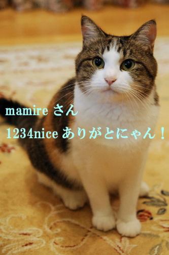 pict0018.jpg