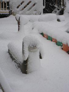 20101231大雪