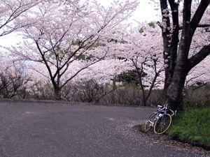 20110403nakaoyama