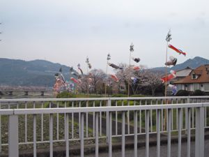 20110403minamatagawa
