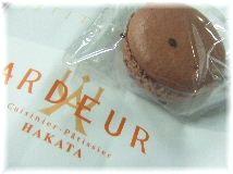 ショコラ セル.JPG